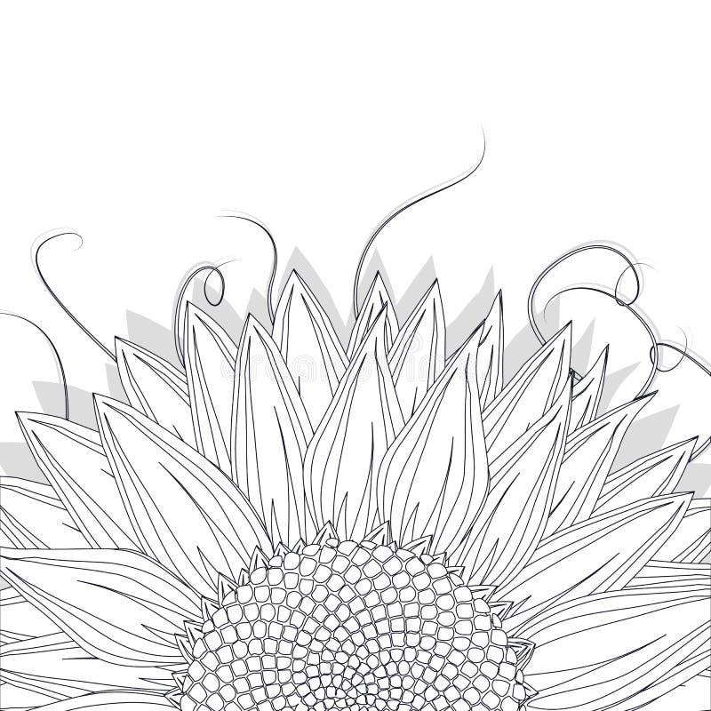 Bosquejo del girasol stock de ilustración