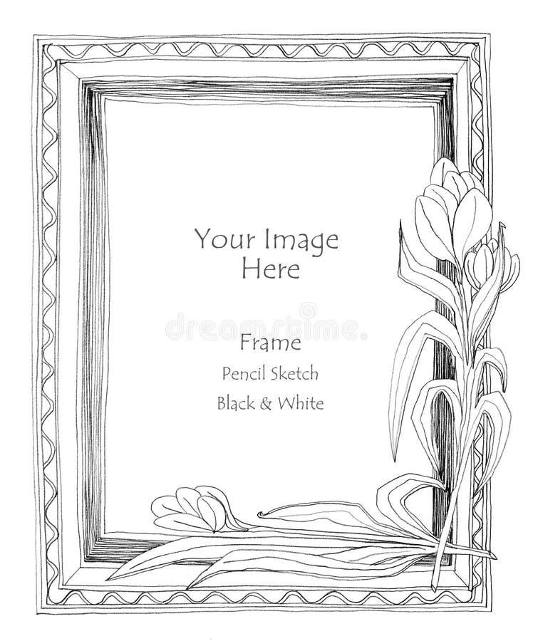 Bosquejo del lápiz de la flor del marco stock de ilustración