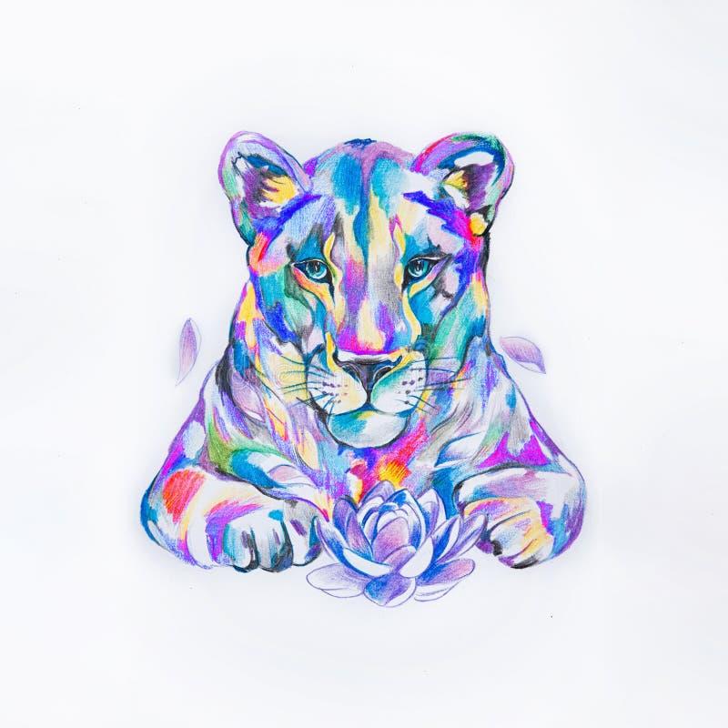 Bosquejo del león en las acuarelas del estilo en el fondo blanco fotos de archivo libres de regalías