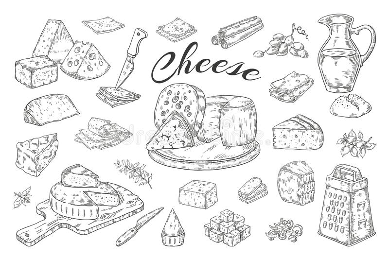 Bosquejo del queso Productos l?cteos exhaustos de la mano, rebanadas de la comida gastr?noma, brie del parmesano del Cheddar Vint libre illustration
