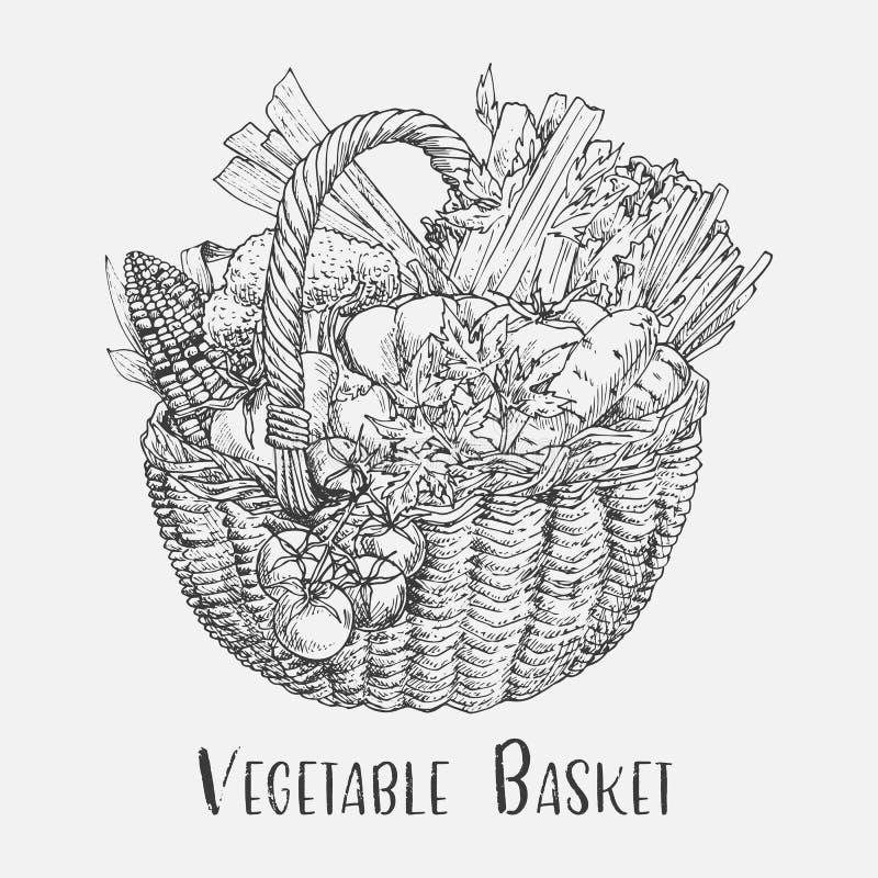 Bosquejo del tomate y del maíz, bróculi en cesta stock de ilustración