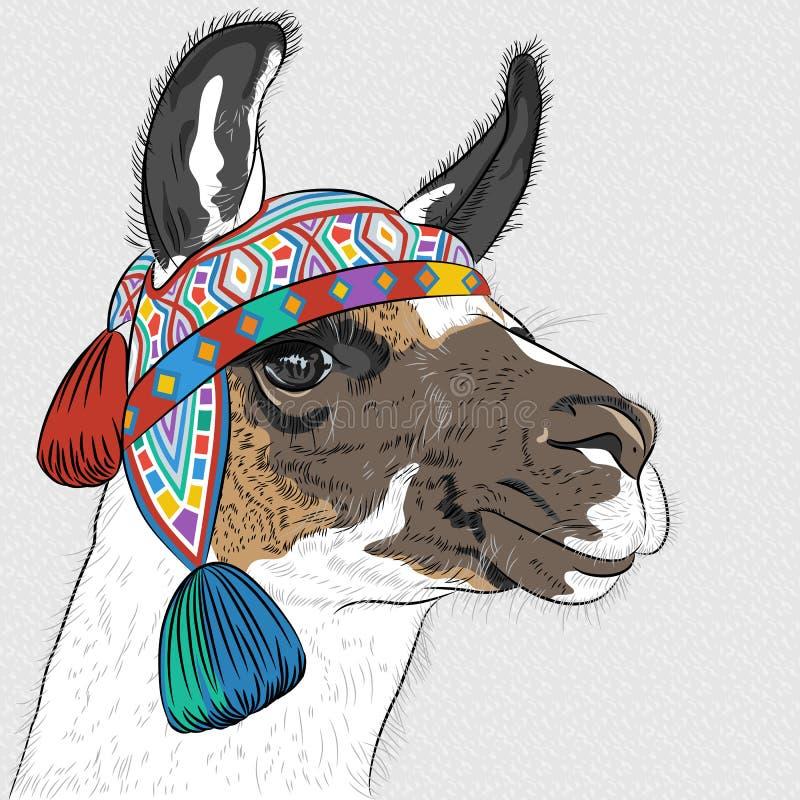 Bosquejo del vector de la alpaca stock de ilustración