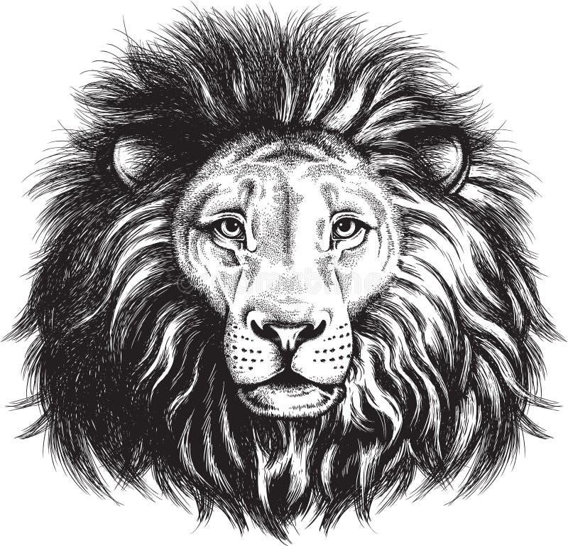 Bosquejo del vector de la cara de un león majestuoso stock de ilustración