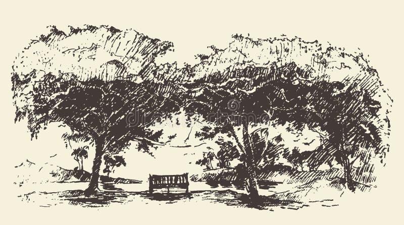 Bosquejo dibujado banco romántico hermoso del vector del árbol ilustración del vector