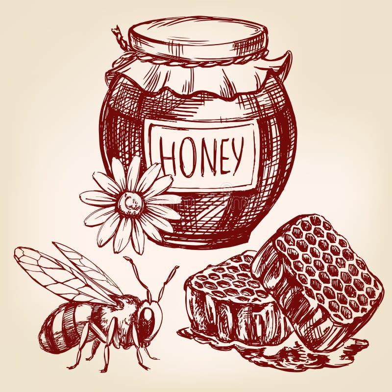 Bosquejo dibujado mano del llustration del vector del sistema de elementos de la miel stock de ilustración