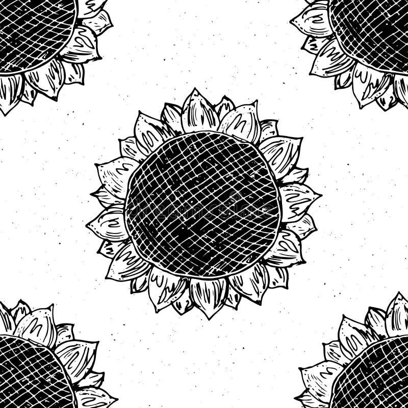 Bosquejo dibujado mano inconsútil del modelo del girasol, fondo, ejemplo del vector del diseño de la tipografía ilustración del vector