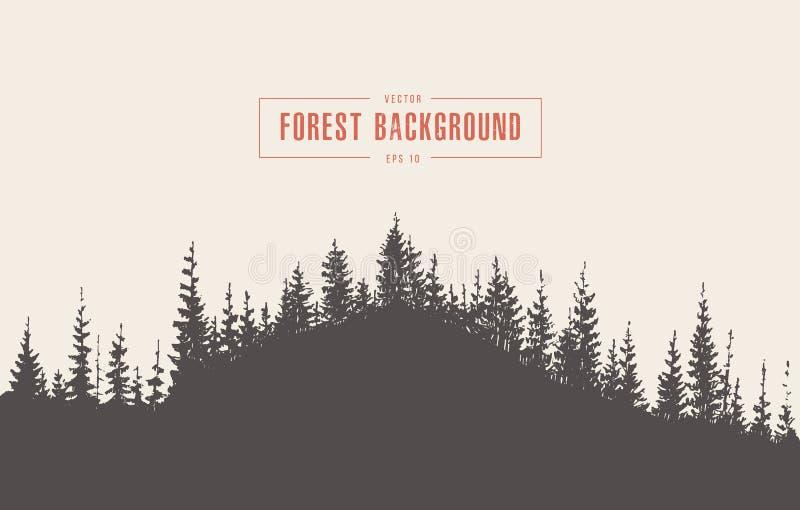 Bosquejo dibujado vector del fondo del bosque del pino libre illustration