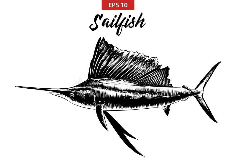 Bosquejo exhausto de la mano del pez volador en negro aislado en el fondo blanco Dibujo detallado del estilo de la aguafuerte del libre illustration