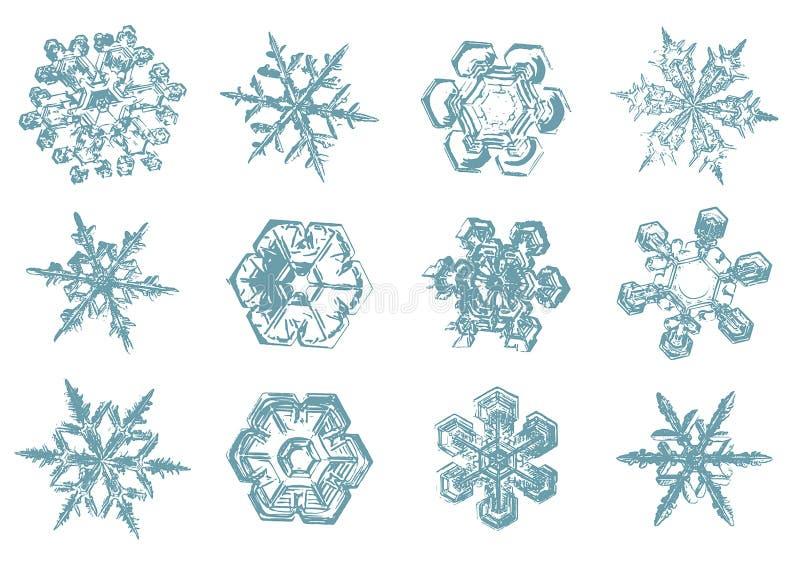 Bosquejo exhausto de la mano del vector del ejemplo de los copos de nieve en el fondo blanco libre illustration