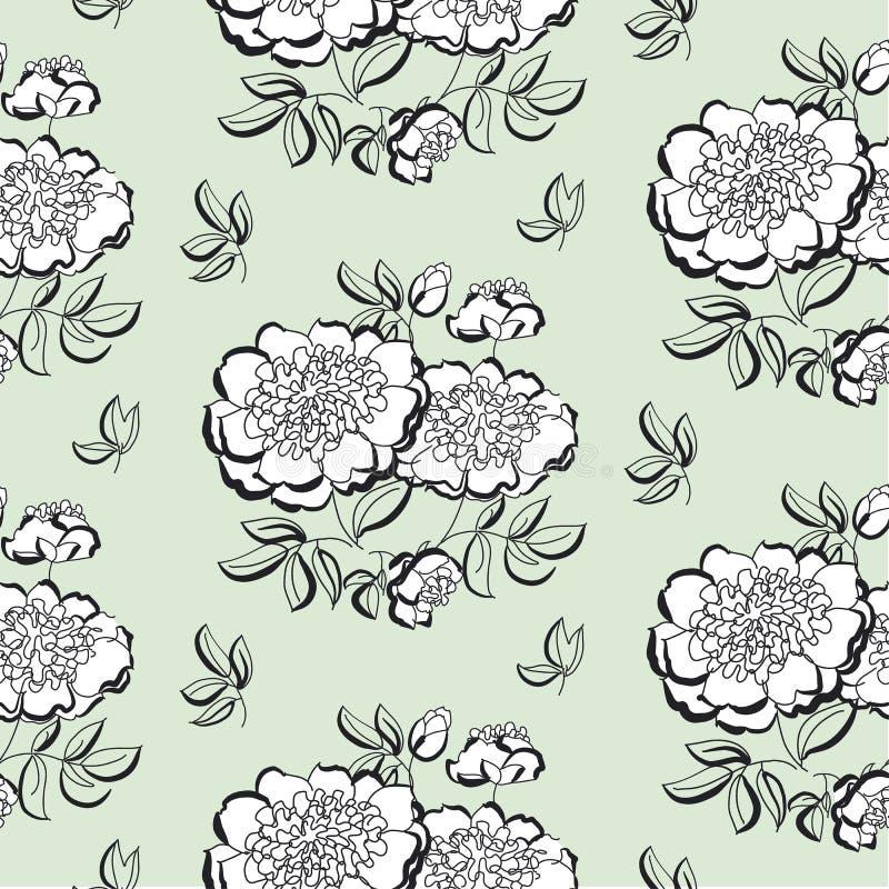 Bosquejo floral de la peonía blanca Ilustración del vector de la flor del resorte Bl libre illustration