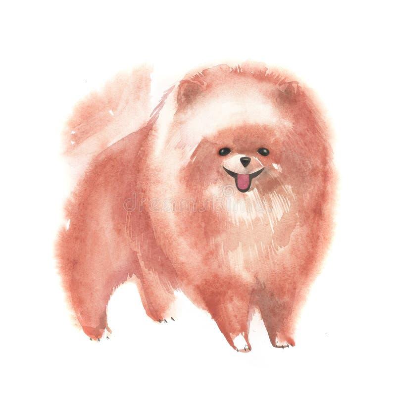 Bosquejo lindo del perro Ejemplo pintado a mano de la acuarela libre illustration