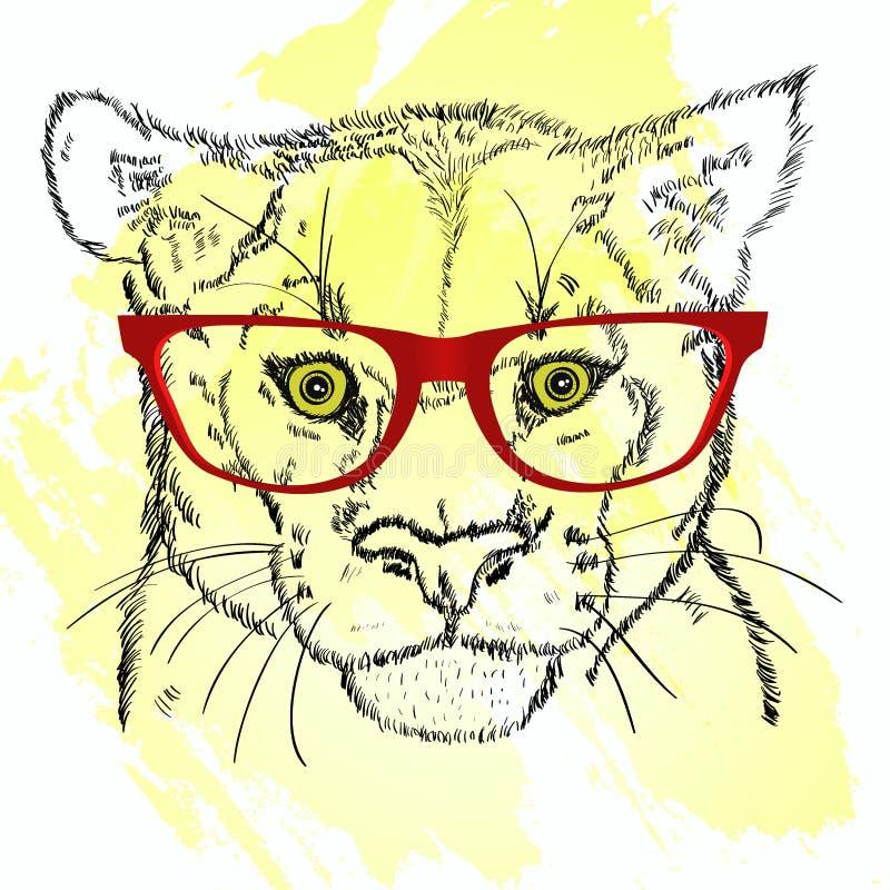 Bosquejo principal del puma con los vidrios ilustración del vector