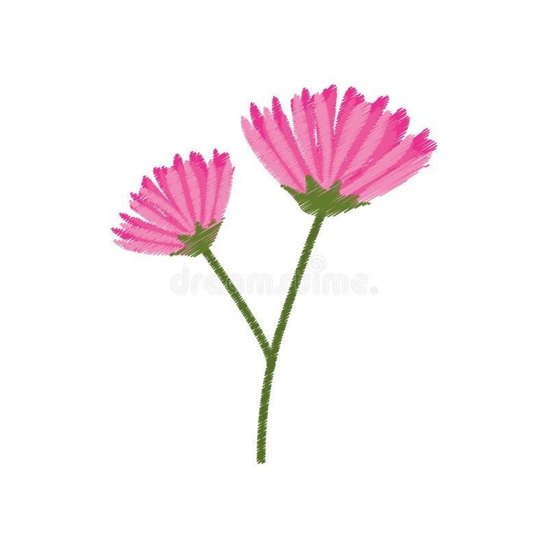 bosquejo rosado de la primavera de la flor stock de ilustración