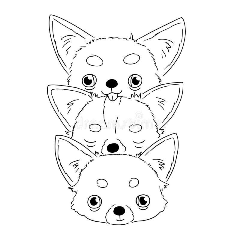 Bosquejos de cabezas lindas de la chihuahua en el fondo blanco Ejemplo del vector de los perritos exhaustos de la mano en la situ stock de ilustración