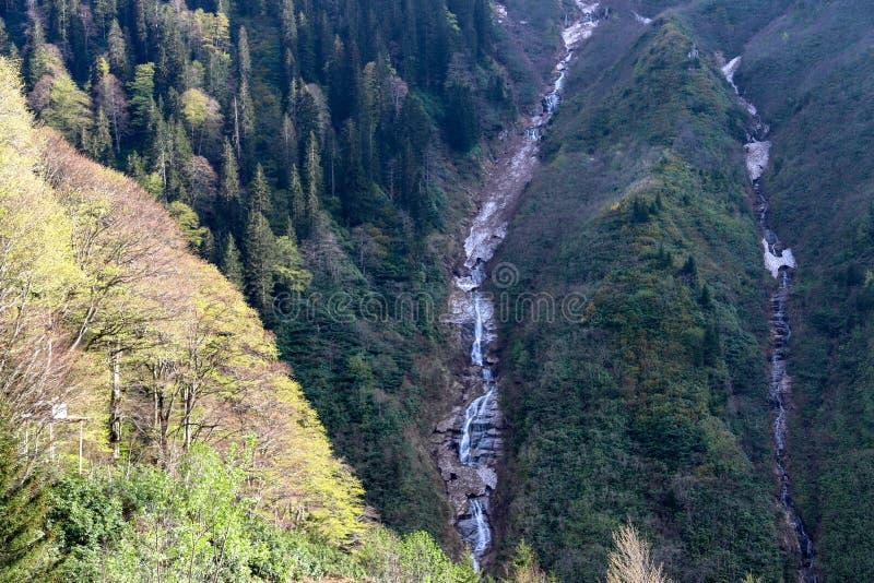 Bosques, cascadas y corrientes a relajarse foto de archivo libre de regalías