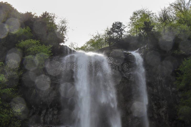 Bosques, cascadas y corrientes a relajarse imágenes de archivo libres de regalías