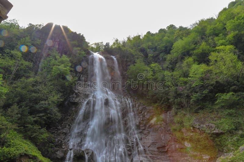 Bosques, cascadas y corrientes a relajarse fotografía de archivo