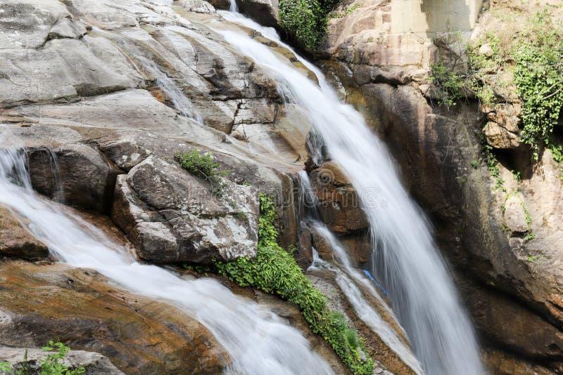 Bosques, cascadas y corrientes a relajarse fotos de archivo
