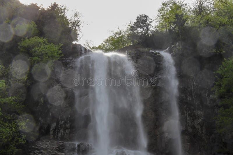 Bosques, cascadas y corrientes a relajarse imagen de archivo libre de regalías
