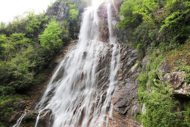 Bosques, cascadas y corrientes a relajarse imagen de archivo