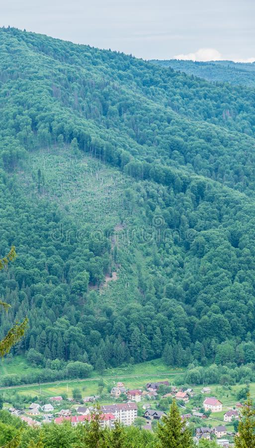Bosques y ciudad cárpatos en valle fotos de archivo libres de regalías