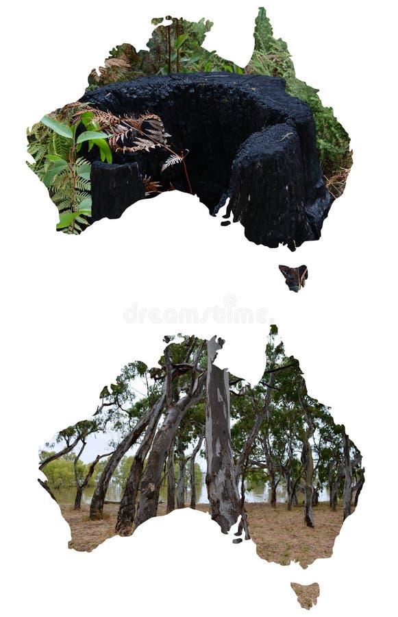 Bosques y paisajes en Australia, de una serie de ilustraciones de paisajes australianos imagen de archivo