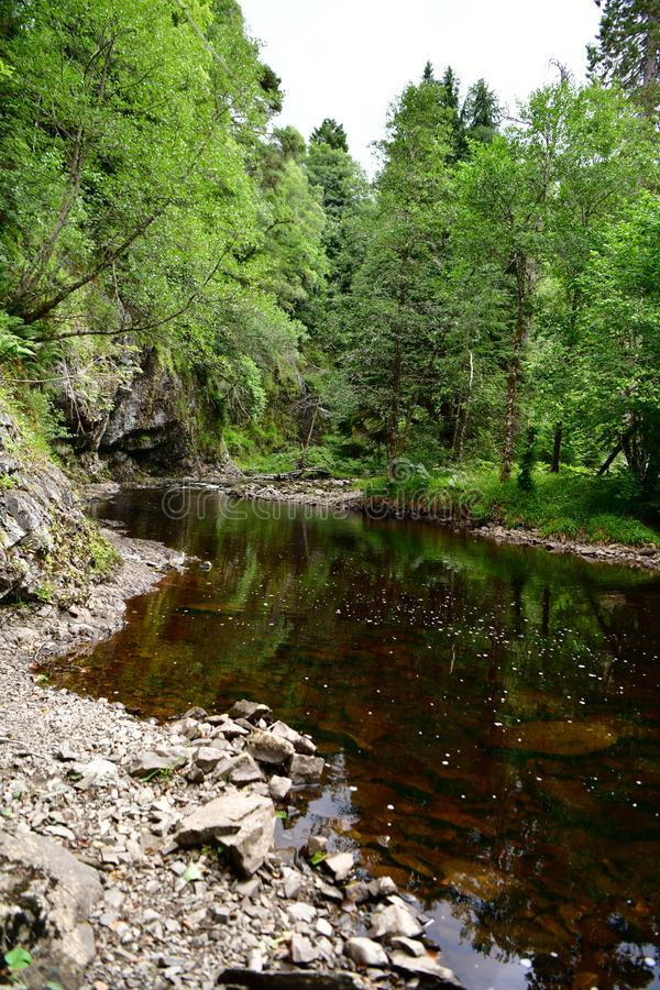 Bosques y río, piedras de Escocia imagen de archivo