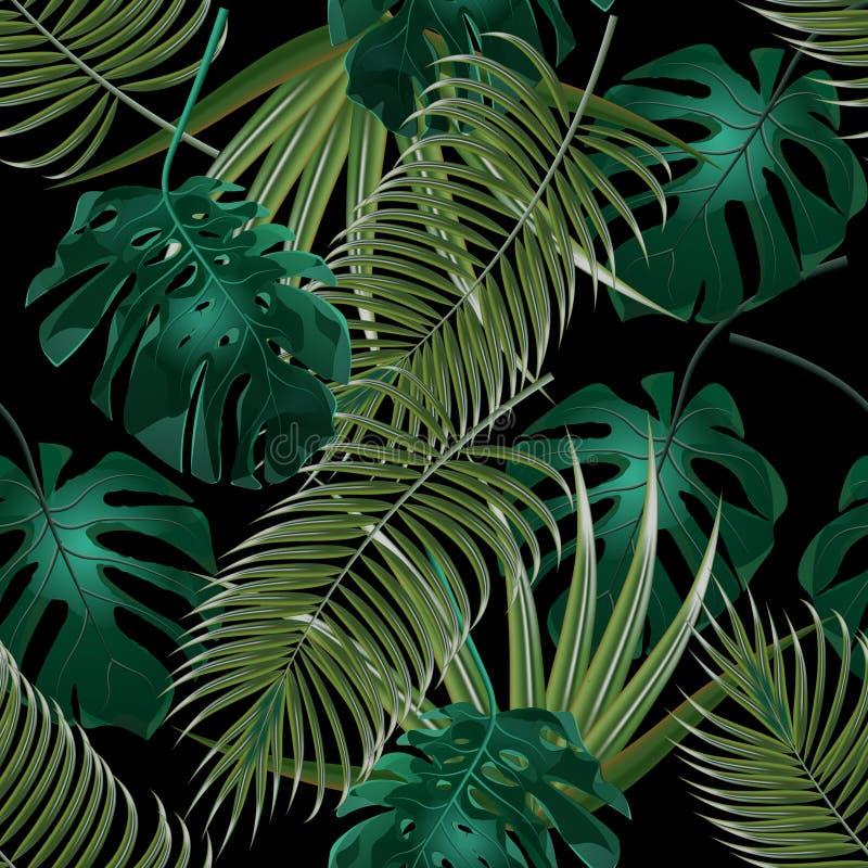 Bosquets de jungle des palmettes tropicales Configuration florale sans joint D'isolement sur un fond noir Illustration illustration de vecteur