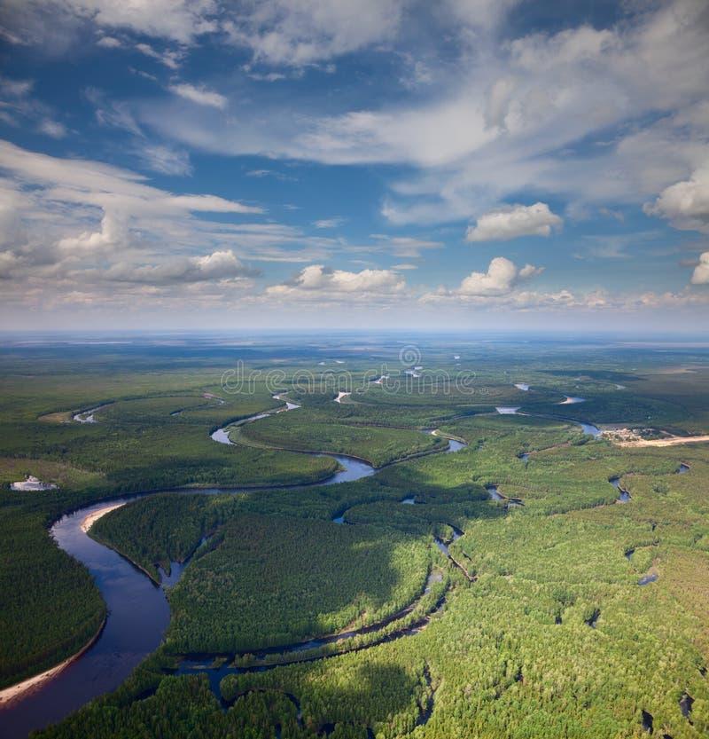 Bosrivier in de zomer, hoogste mening stock afbeelding