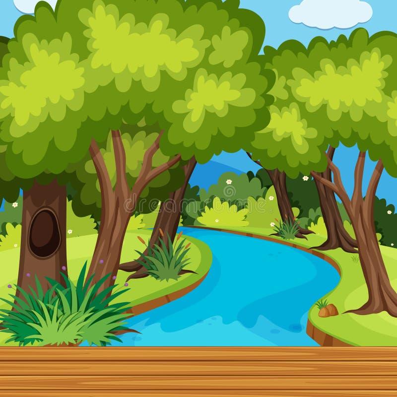 Bosscène met vele bomen en rivier stock illustratie