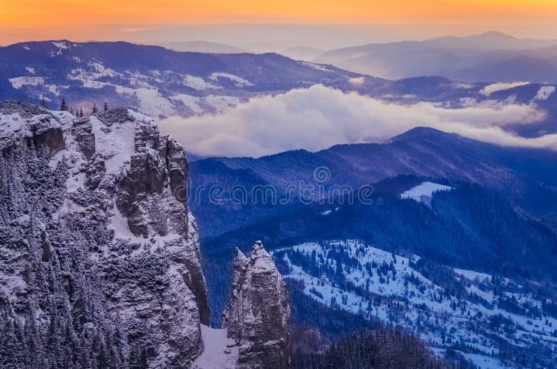 Bossen in de sneeuw royalty-vrije stock afbeeldingen