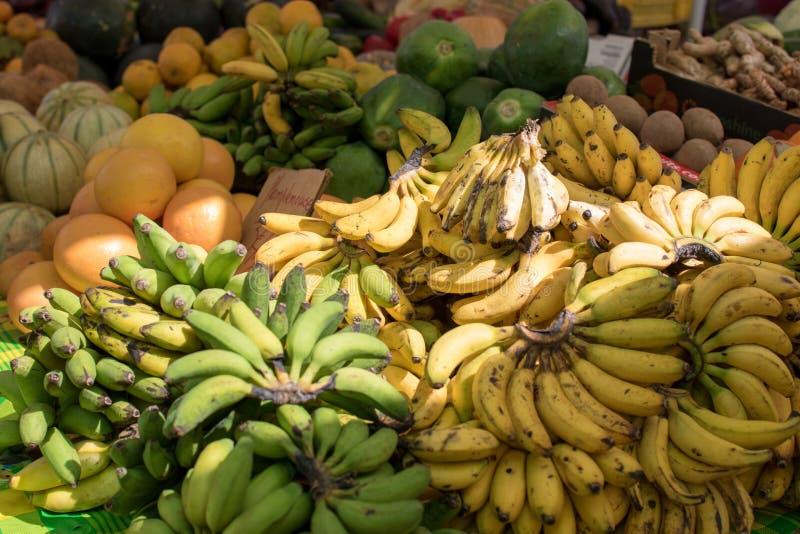 Bossen van kleine bananen op vertoning in een lokale markt in Guadeloupe royalty-vrije stock foto