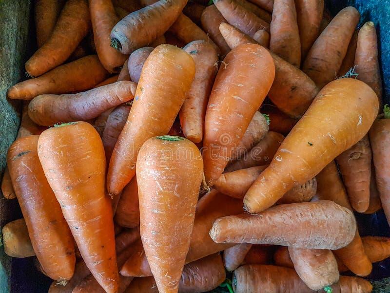 Bossen van kleurrijke oranje wortelen van de markt stock afbeelding