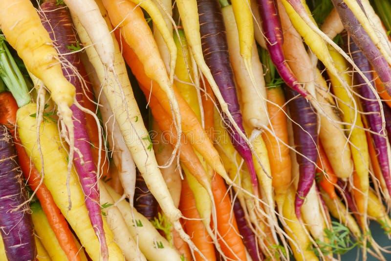 Bossen van kleurrijke regenboogwortelen bij de landbouwersmarkt royalty-vrije stock afbeelding