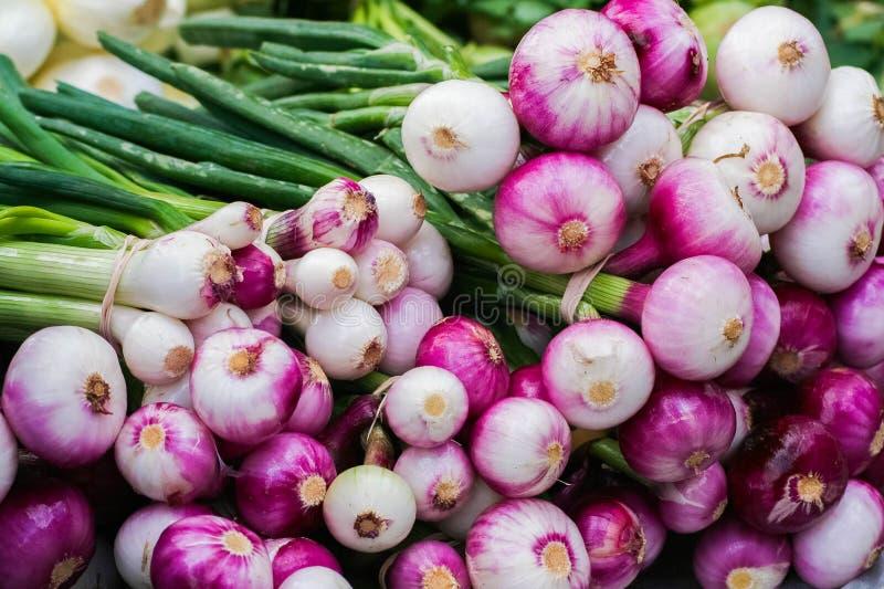 Bossen van uien voor verkoop bij de landbouwersmarkt royalty-vrije stock afbeeldingen
