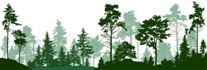 Bossilhouetbomen Altijdgroen naaldbos met pijnbomen, sparren, Kerstmisboom, ceder, Schotse spar Vector vector illustratie
