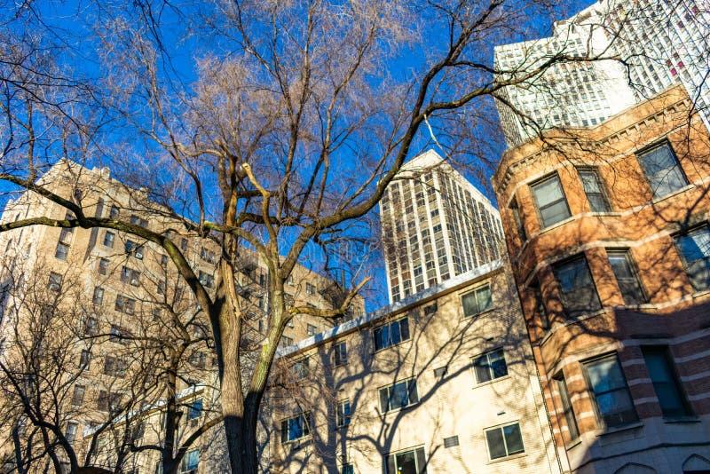 Bostads- byggnader i Lincoln Park Chicago under höst arkivbild