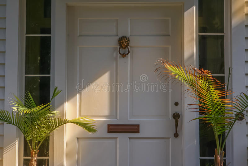 Bostads- dörr - Lion Door Knocker royaltyfri fotografi