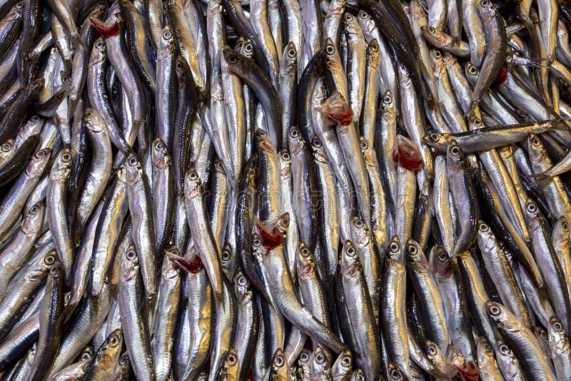 Bostanli/Smirne/Turchia, il 20 febbraio 2019, bazar Bospa del mercato ittico di Bostanli immagini stock