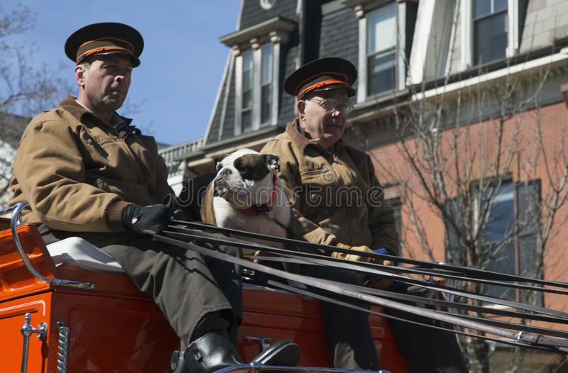 Boston Beer wagon and English Bull Dog, St. Patrick's Day Parade, 2014, South Boston, Massachusetts, USA stock photography