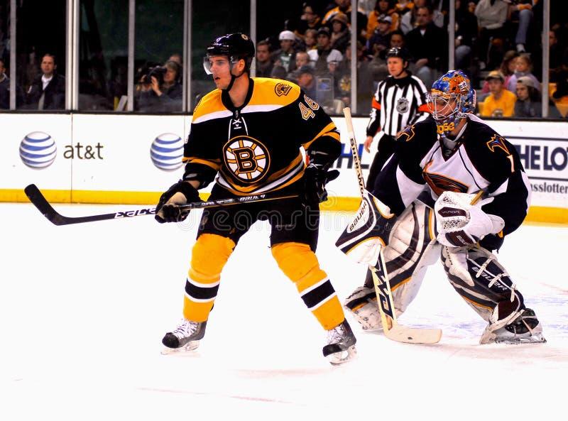 Boston Bruins Center David Krejci. #46 royalty free stock photos