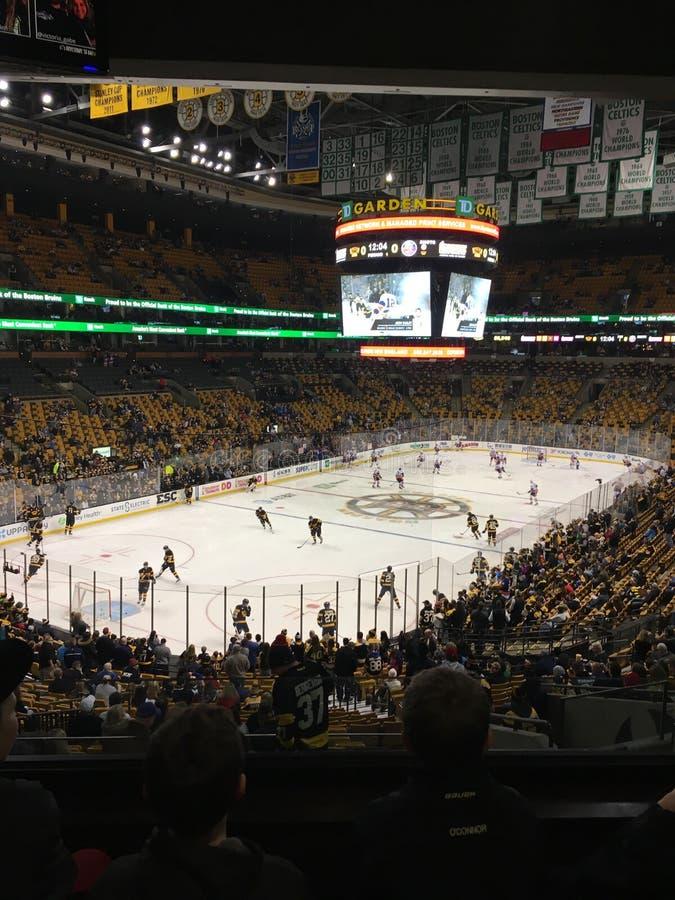 Boston Bruins do jardim do banco do TD imagem de stock