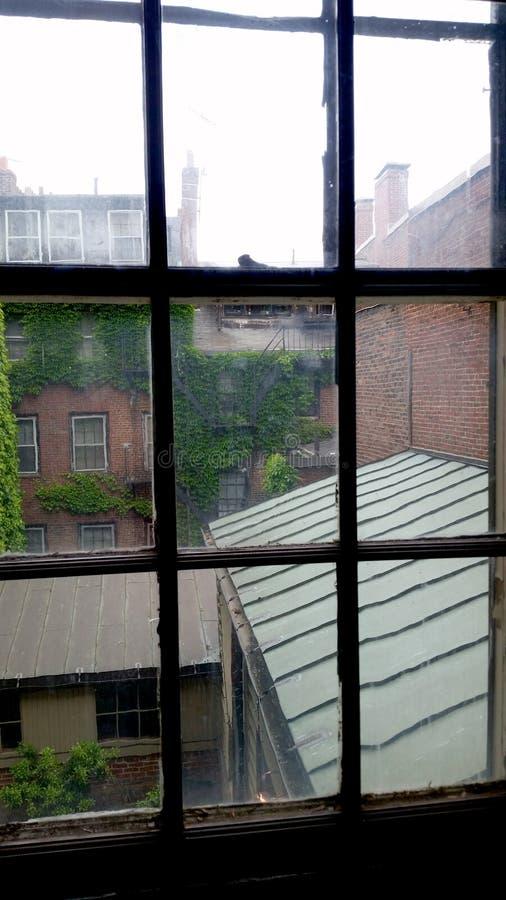 Boston budynków okno widok zdjęcia royalty free