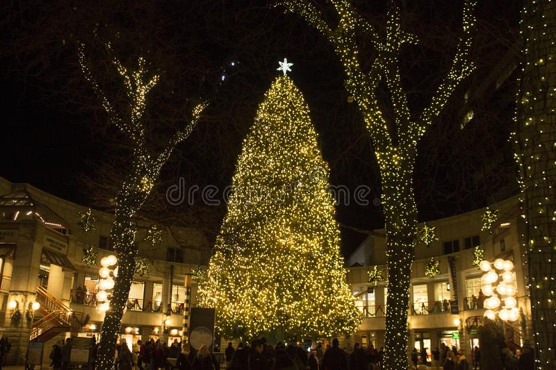 Boston Christmas Quincy Market royalty free stock photography