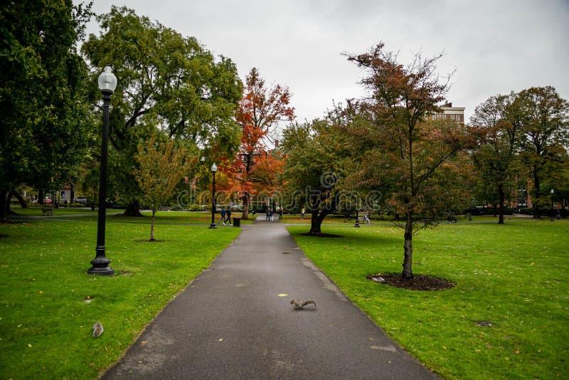 Boston Common Boston Common är den äldsta stadsparken i Förenta staterna royaltyfria foton