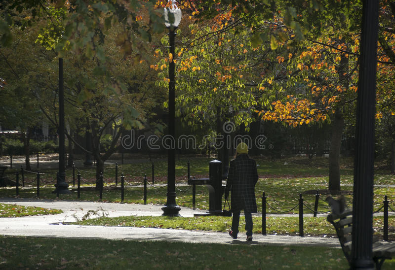 Boston Common chilly fall day stock photography