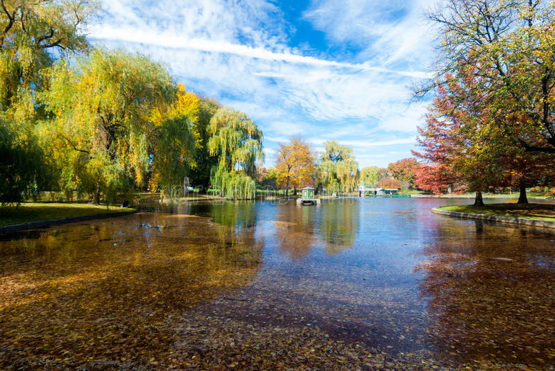 Boston Common in fall. Boston Common is a central public park in downtown Boston, Massachusetts. It is sometimes erroneously referred to as the Boston Commons royalty free stock photo