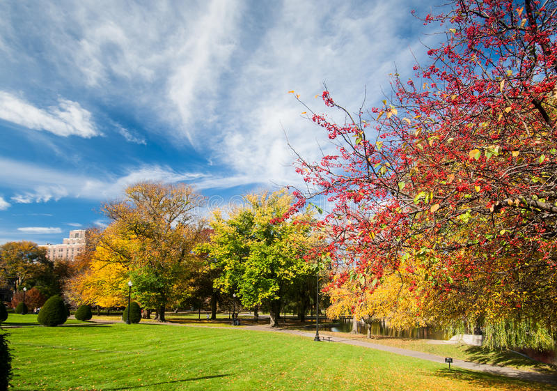 Boston Common in fall. Boston Common is a central public park in downtown Boston, Massachusetts. It is sometimes erroneously referred to as the Boston Commons royalty free stock photography