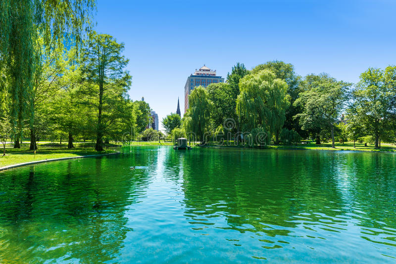 Boston Common lake and skyline in Massachusetts royalty free stock photography
