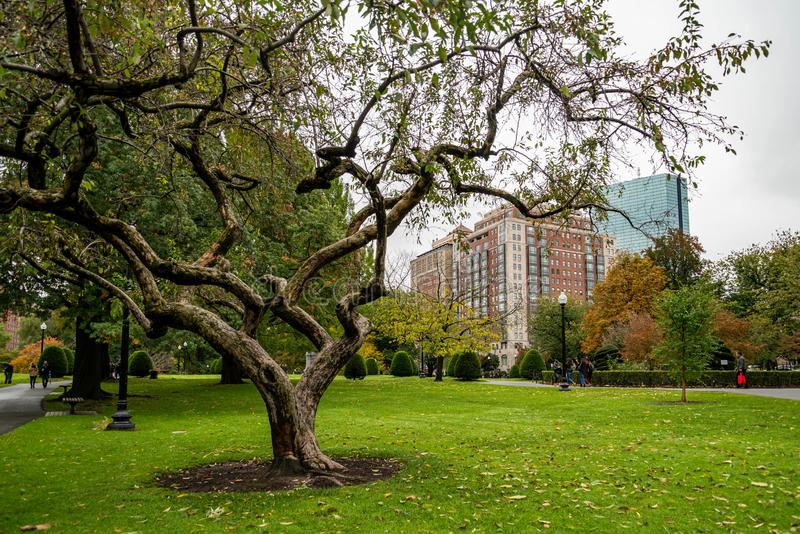 Boston Common. Boston Common is the oldest city park in the United States. BOSTON, MA: OCTOBER 28, 2018: Boston Common. Boston Common is the oldest city park in stock images